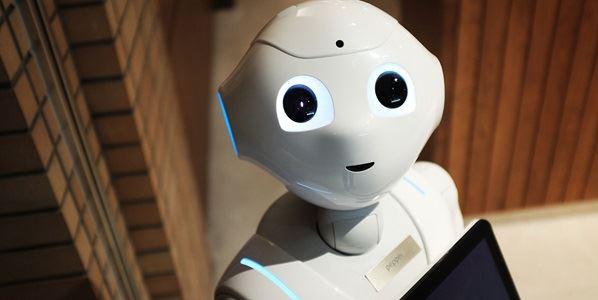 Sight Robot
