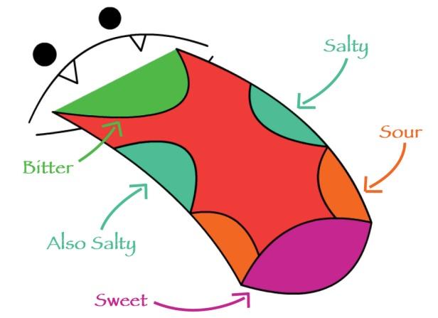 tongue-map