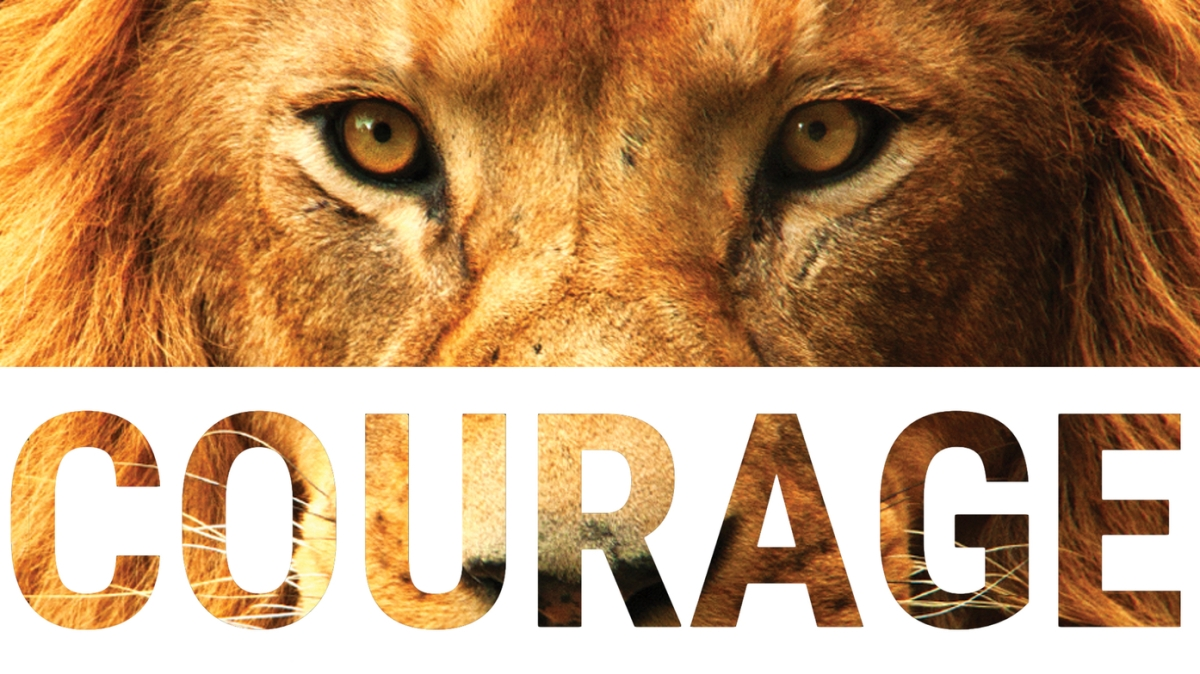 Courage in Business – Vividcomm